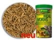 Tropical Meal Worms 250 ml